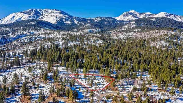 45 Pine View Ct, Reno, NV 89511 (MLS #190018180) :: Joshua Fink Group