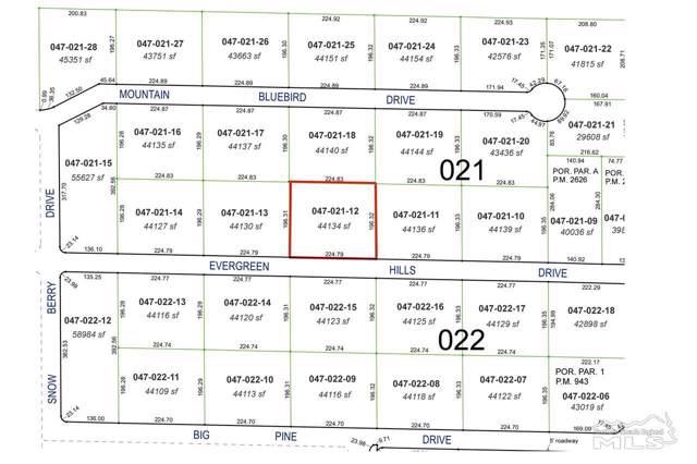 0 Evergreen Hills, Reno, NV 89511 (MLS #190018338) :: Ferrari-Lund Real Estate