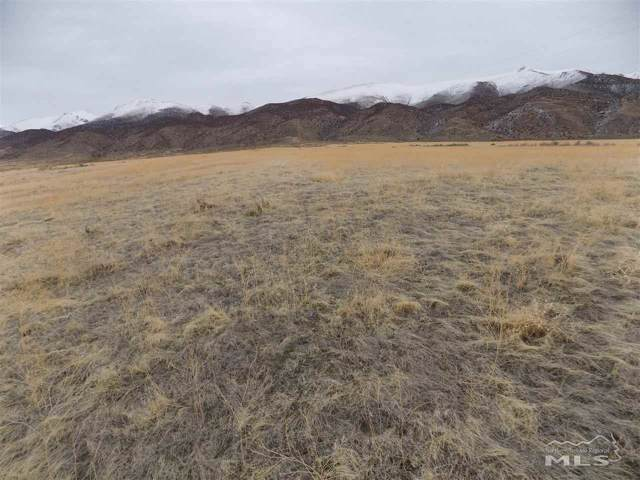 12705 Ruby Marsh Trail, Lovelock, NV 89419 (MLS #200000202) :: The Hertz Team