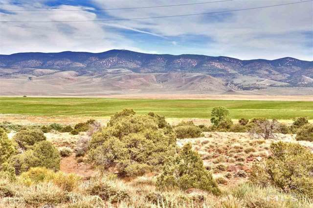 01 Desert Creek Rd Parcel C, Wellington, NV 89444 (MLS #200000496) :: Ferrari-Lund Real Estate
