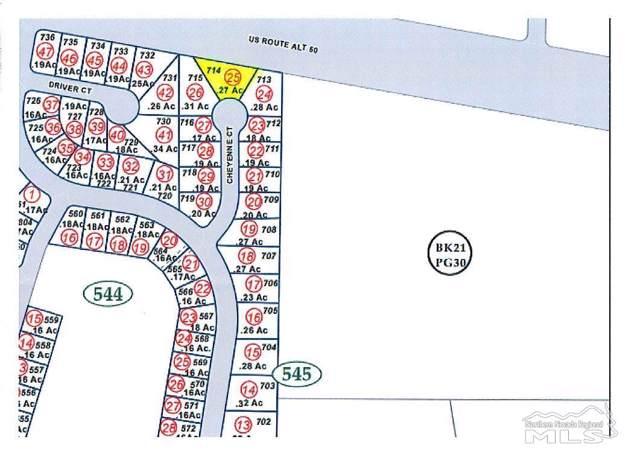 1992 Cheyenne Court, Fernley, NV 89408 (MLS #200000509) :: Vaulet Group Real Estate
