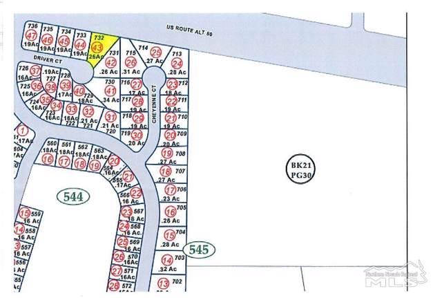 1924 Driver Court, Fernley, NV 89408 (MLS #200000513) :: Vaulet Group Real Estate