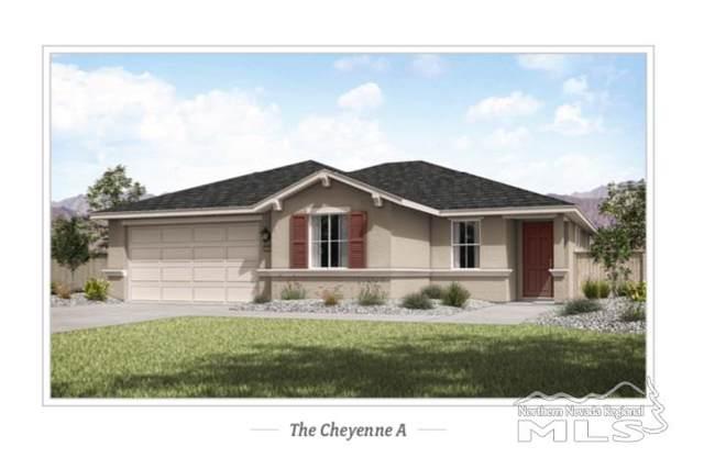 330 Yuba Ct, Dayton, NV 89403 (MLS #200000729) :: Chase International Real Estate
