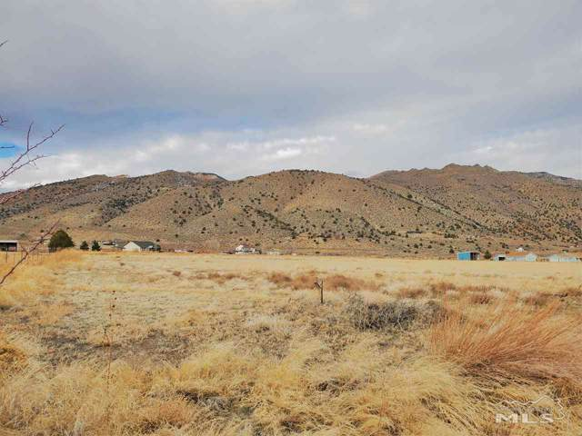 65 Lower Colony Rd, Wellington, NV 89444 (MLS #200000817) :: Ferrari-Lund Real Estate