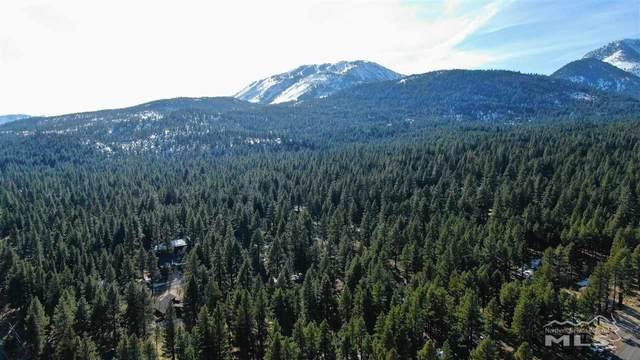 850 Piney Creek Road, Reno, NV 89511 (MLS #200001392) :: Vaulet Group Real Estate