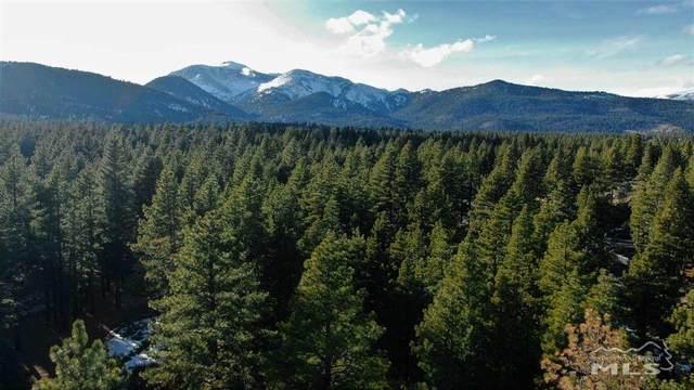 880 Piney Creek Road, Reno, NV 89511 (MLS #200001393) :: Vaulet Group Real Estate