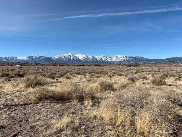 1660 Windmill Rd., Gardnerville, NV 89410 (MLS #200001721) :: Harcourts NV1