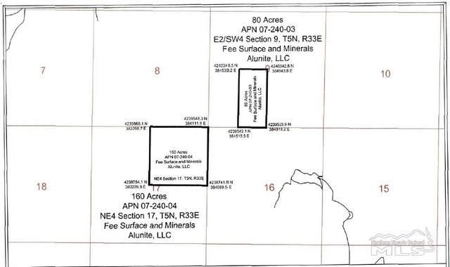007-240-03, Mina, NV 89422 (MLS #200001771) :: NVGemme Real Estate