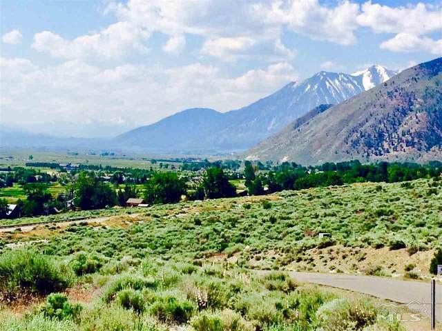 298 Adams Ranch Road, Genoa, NV 89411 (MLS #200001991) :: L. Clarke Group | RE/MAX Professionals