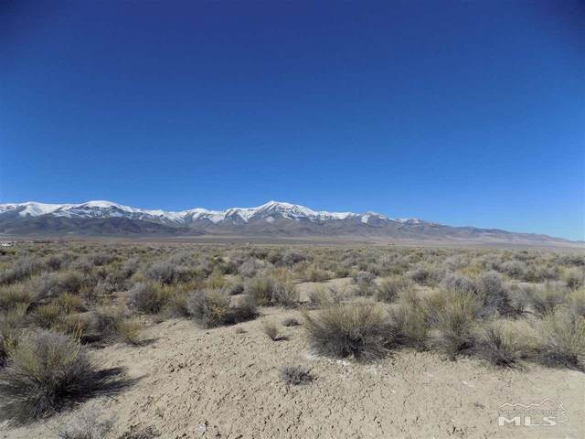 01211002 Near Kyle Hot Springs Rd, Unionville, NV 89418 (MLS #200002017) :: Chase International Real Estate