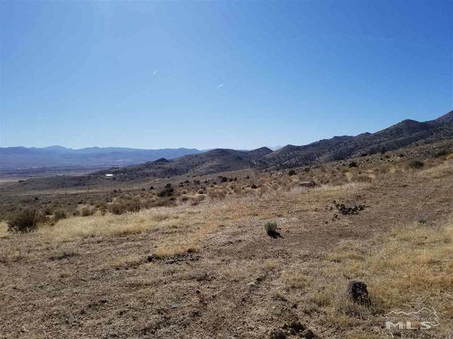 1200 Eagle View Trail, Dayton, NV 89403 (MLS #200002314) :: NVGemme Real Estate
