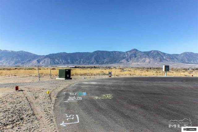 2559 Last Chance, Minden, NV 89423 (MLS #200002343) :: The Mike Wood Team