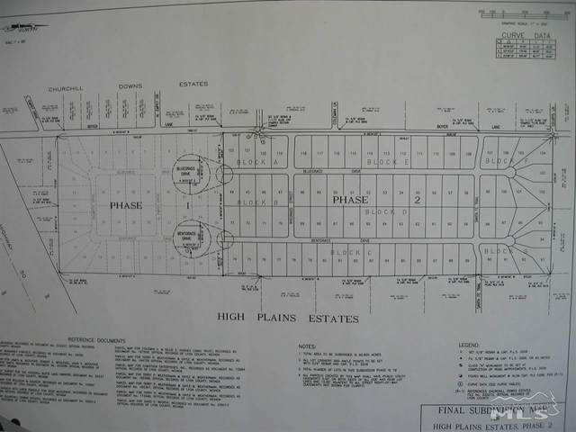 Parcel 1 Boyer Lane, Stagecoach, NV 89429 (MLS #200002773) :: Chase International Real Estate