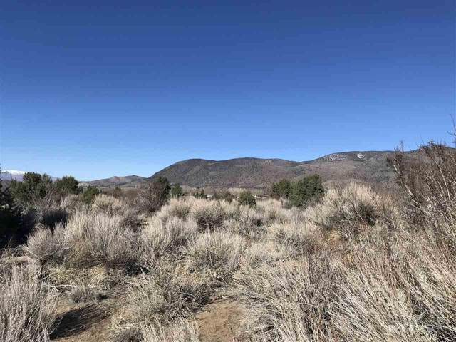 0 Highway 395, Walker, CA, NV 96107 (MLS #200003117) :: Vaulet Group Real Estate