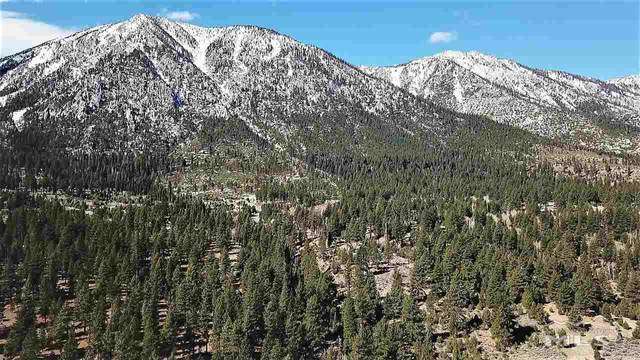69 Five Creek, Gardnerville, NV 89460 (MLS #200003539) :: Ferrari-Lund Real Estate