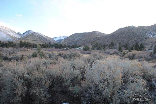 0 Mule Deer Road, Walker, CA, NV 96107 (MLS #200003835) :: Vaulet Group Real Estate