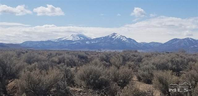 238 &244 Chaparral Dr., Smith, NV 89430 (MLS #200003868) :: Harcourts NV1