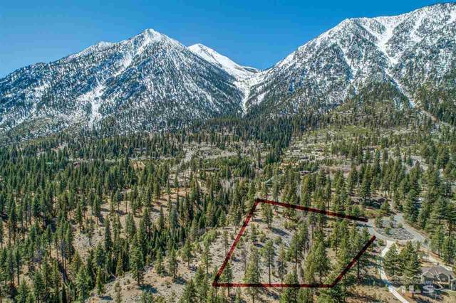 287 Tigerwood Ct, Gardnerville, NV 89460 (MLS #200004353) :: Ferrari-Lund Real Estate