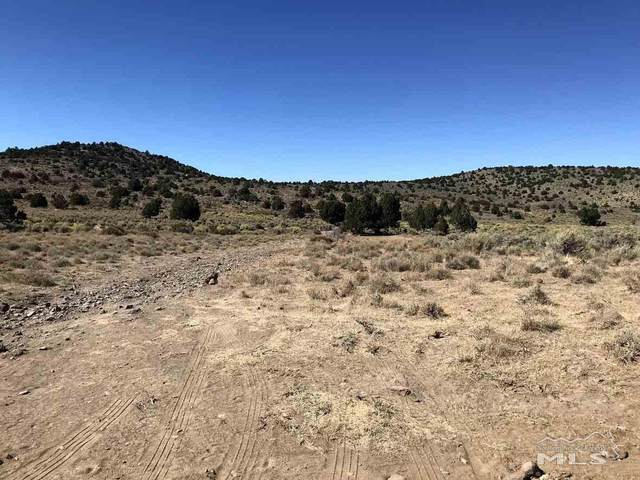 000 Long Valley Road, Virginia City, NV 89521 (MLS #200004396) :: Ferrari-Lund Real Estate