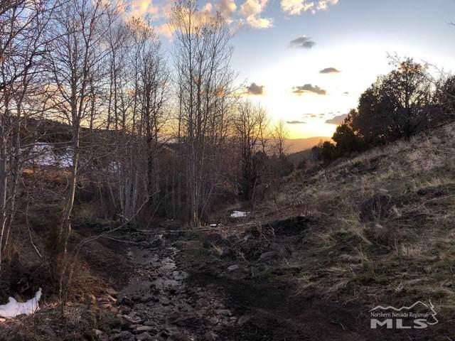 3100 Piute Creek Rd, Reno, NV 89510 (MLS #200004423) :: NVGemme Real Estate