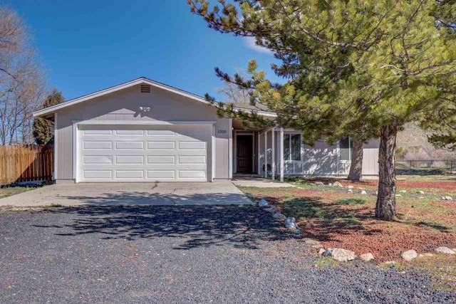 1350 Kim Pl, Minden, NV 89423 (MLS #200004448) :: Chase International Real Estate