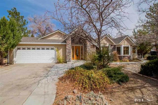 171 Ring Rd., Dayton, NV 89403 (MLS #200004539) :: NVGemme Real Estate
