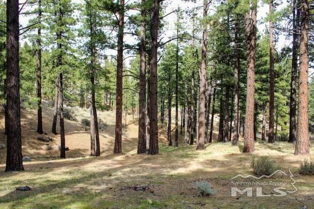 725 Kelly Canyon, Washoe Valley, NV 89704 (MLS #200004877) :: Morales Hall Group