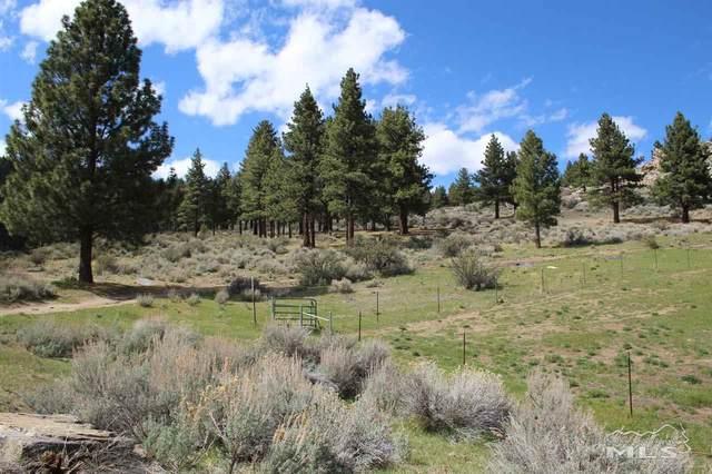 685 Kelly Canyon, Washoe Valley, NV 89704 (MLS #200004879) :: Morales Hall Group