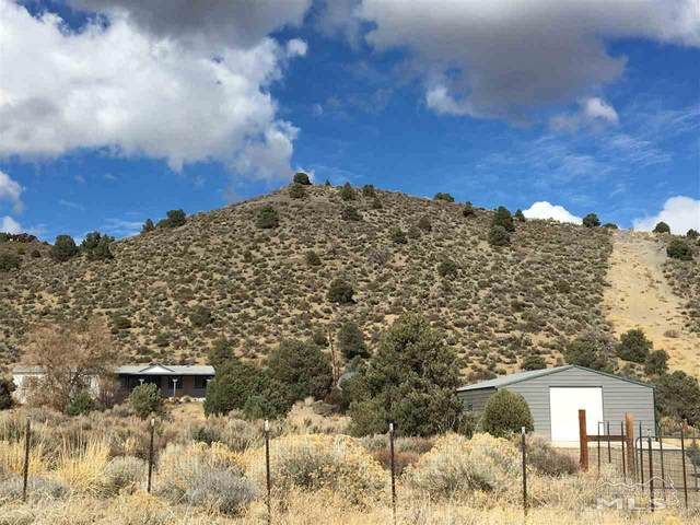 3850 Topaz Ranch Drive, Wellington, NV 89444 (MLS #200005801) :: Theresa Nelson Real Estate