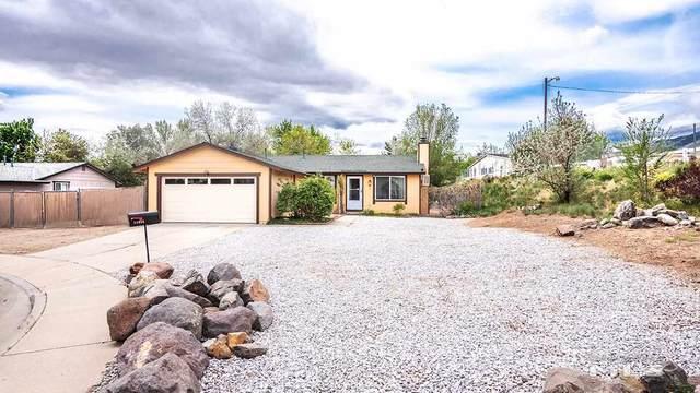 11024 Hornblende Ct., Reno, NV 89506 (MLS #200006158) :: Vaulet Group Real Estate
