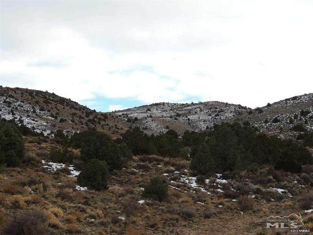 LOT 492S-40S, Virginia City, NV 89440 (MLS #200006878) :: The Craig Team