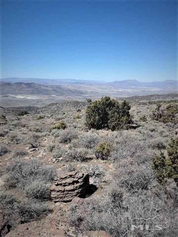 0 Wilcox Ranch Road, Reno, NV 89510 (MLS #200006993) :: Harcourts NV1