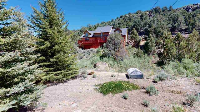 2141 Lousetown Road, Reno, NV 89521 (MLS #200007094) :: The Craig Team