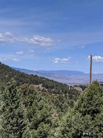 4860 Calavaras Road, Reno, NV 89521 (MLS #200007716) :: Fink Morales Hall Group