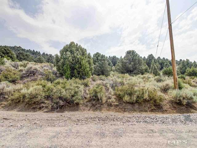 21905 Panhandle, Virginia City, NV 89521 (MLS #200008141) :: Theresa Nelson Real Estate