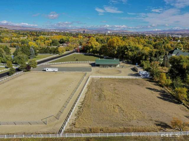 2120 Green Tree Lane, Reno, NV 89511 (MLS #200008592) :: Theresa Nelson Real Estate