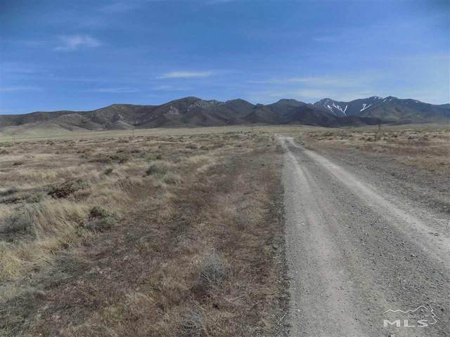 21 Kings View Rd, Imlay, NV 89418 (MLS #200008729) :: NVGemme Real Estate