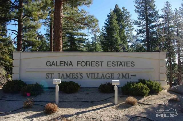 1385 Austrian Pine Road, Reno, NV 89511 (MLS #200008767) :: Theresa Nelson Real Estate