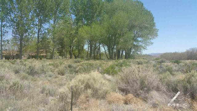 8 Moyle Court, Yerington, NV 89447 (MLS #200008780) :: Ferrari-Lund Real Estate