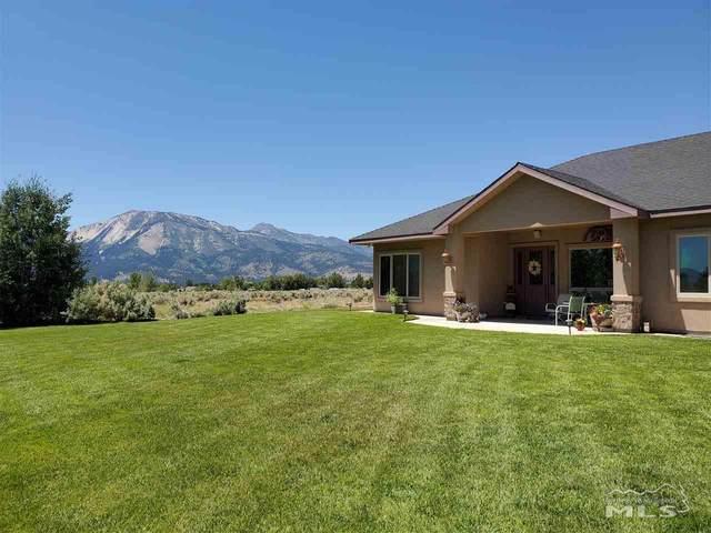 3625 Poco Lena, Washoe Valley, NV 89704 (MLS #200008966) :: Fink Morales Hall Group