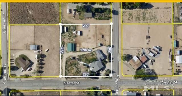 11015 Deodar Way, Reno, NV 89506 (MLS #200010263) :: Chase International Real Estate