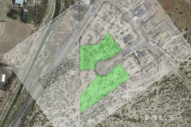 520-585 Quail Ct, Lovelock, NV 89419 (MLS #200010356) :: NVGemme Real Estate