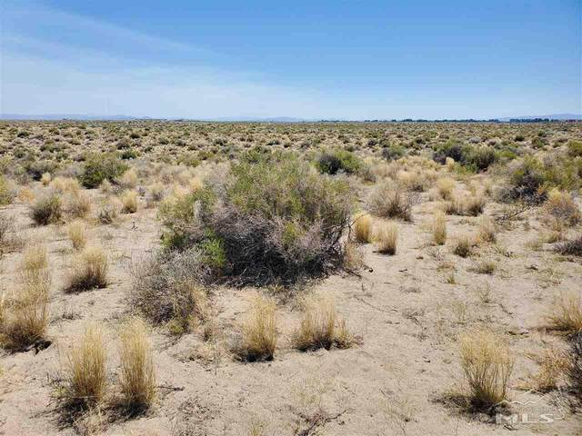 Par 009-391-09, Fallon, NV 89406 (MLS #200010404) :: NVGemme Real Estate