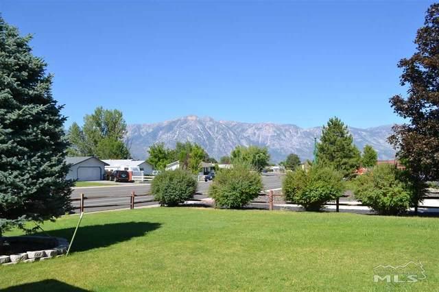 750 Bluerock Rd, Gardnerville, NV 89460 (MLS #200010432) :: NVGemme Real Estate