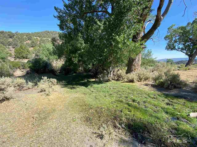 Virginia City Ranches, Virginia City, NV 89440 (MLS #200010771) :: The Craig Team