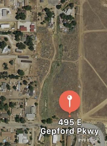 495 E Gepford Parkway, Sun Valley, NV 89433 (MLS #200011364) :: Ferrari-Lund Real Estate