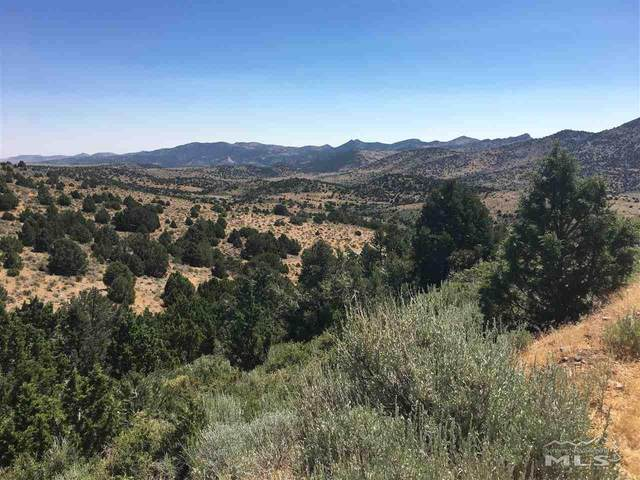 3-A Hanaupah Road, Virginia City, NV 89521 (MLS #200011479) :: The Mike Wood Team
