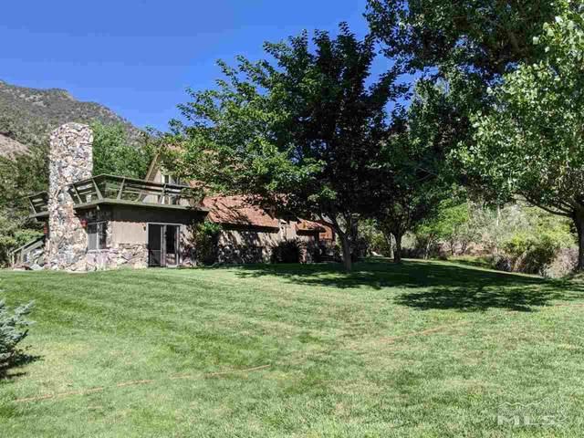 6 Smokey Ct, Austin, NV 89310 (MLS #200011725) :: NVGemme Real Estate