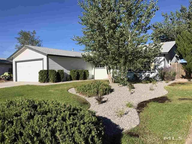 918 Nicole Street, Dayton, NV 89403 (MLS #200012516) :: Vaulet Group Real Estate