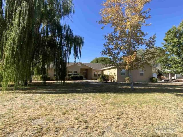 3141 Brookside Circle, Fallon, NV 89406 (MLS #200012706) :: Vaulet Group Real Estate